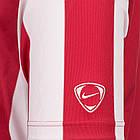Футболка Nike Inter Stripe Jersey (217260-614) - Оригинал, фото 4