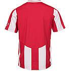 Футболка Nike Inter Stripe Jersey (217260-614) - Оригинал, фото 3