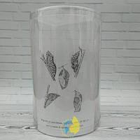 Бабочкарий  13*20 см