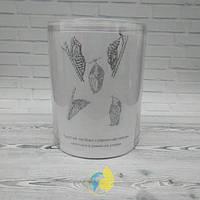 Бабочкарий  12*15 см