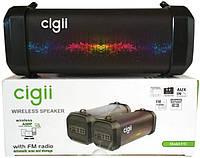 Портативная Bluetooth колонка Cigii F41, фото 1