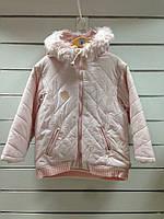 Куртка для девочки демисезонная с вязаным манжетом по низу, фото 1