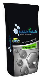 Максимус Екстра Mg (15-5-5)+12Mg+23S