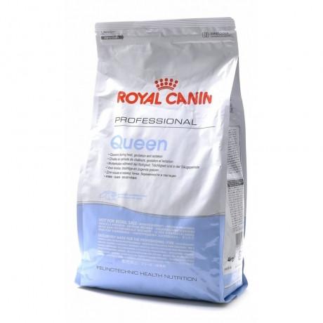 Для кошек в период беременности и лактации  Royal Canin Pro Queen, 4кг, роял канин