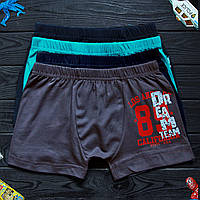 Дитячі труси боксери для хлопчика Nicoletta (вік: 10-11) 30660   5 шт.