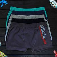 Детские трусы боксеры для мальчика Nicoletta (возраст: 12-13 лет) 30663 | 5 шт.
