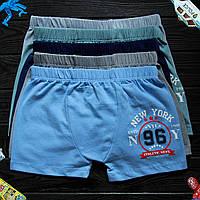 Детские трусы боксеры для мальчика Nicoletta (возраст: 10-11) 41327 | 5 шт.