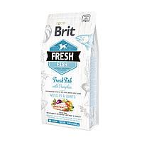 Cухой корм для собак крупных пород Brit Fresh Fish & Pumpkin Adult Large свежая рыба и тыква 12кг (170993)