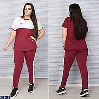 Спортивный  костюм     (размеры 48-64)  0175-64, фото 1