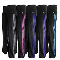 Спортивные брюки  женские (эластан). Мод. 1036. цвет лампас в ассортименте, фото 1