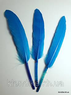 Перья декоративные, 11-14 см, Цвет: Голубой (10 шт.)