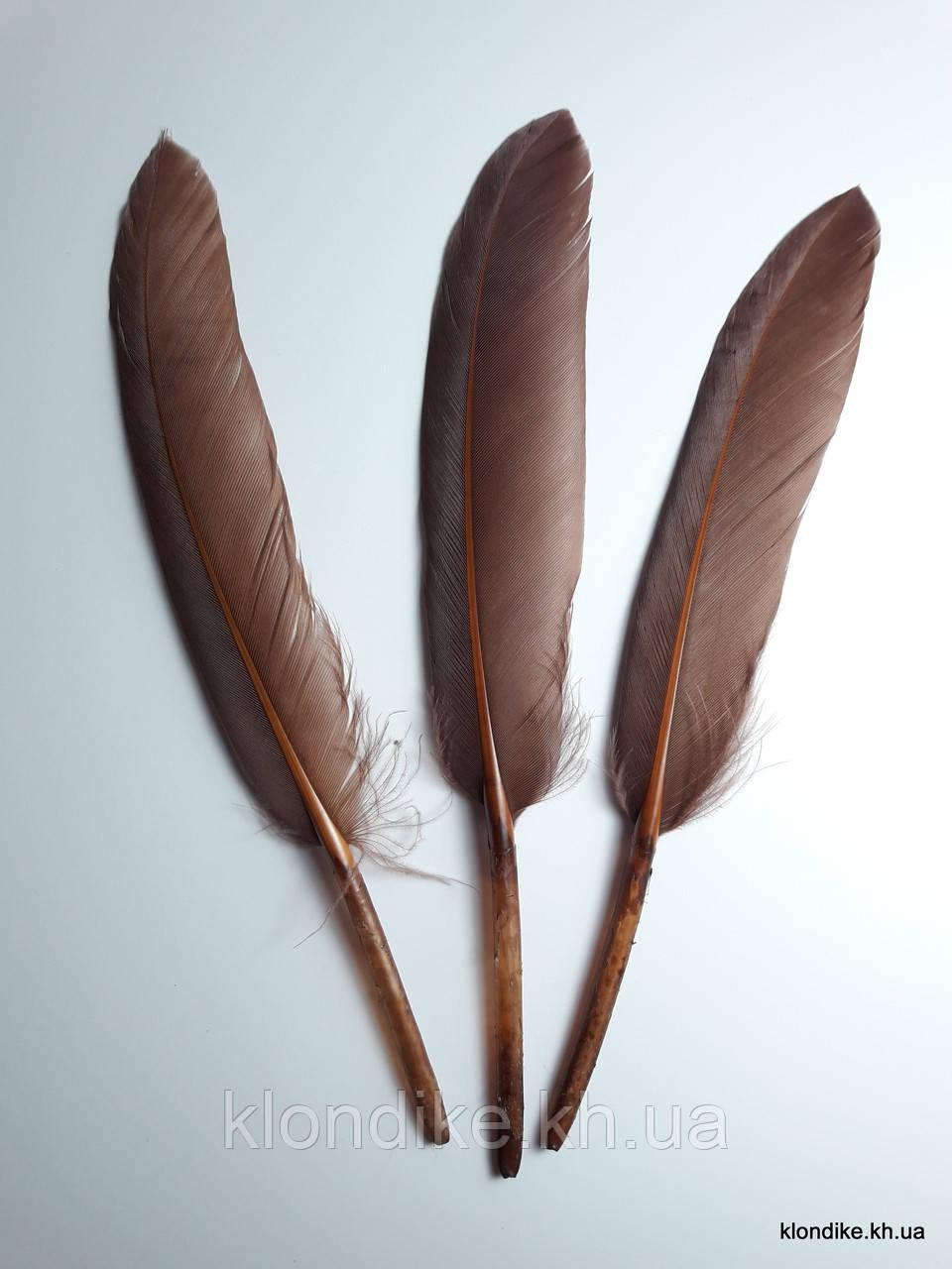 Перья декоративные, 11-14 см, Цвет: Коричневый (10 шт.)