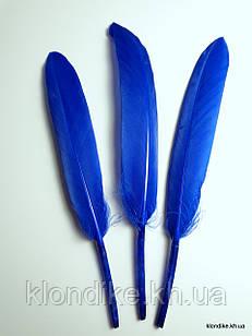 Перья декоративные, 11-14 см, Цвет: Синий (10 шт.)