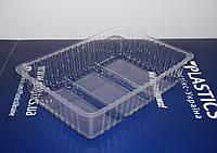 Лоток для кондитерских и хлебобулочных изделий LT50