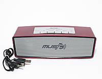 Переносная акустическая система WS-636