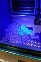 Ледогенератор бутылированный 20кг/сутки Rauder CNB-200FT, фото 2