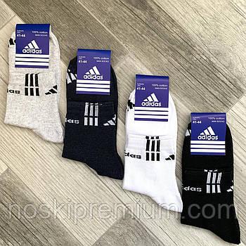Носки мужские спортивные х/б с сеткой Adidas, Sport Socks, 41-44 размер, средние, ассорти, 12630