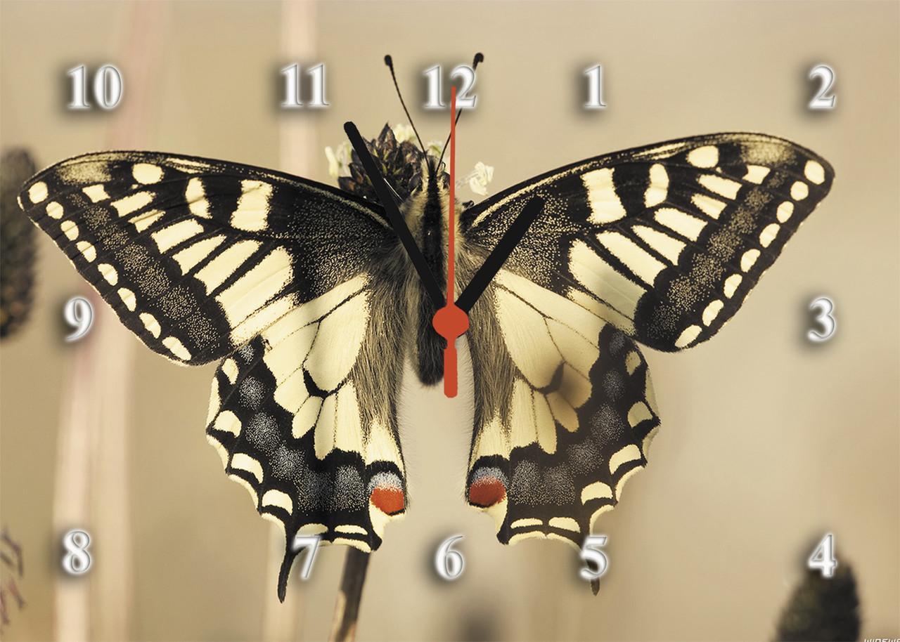 "Часы настенные ""Бабочка""- из стекла"