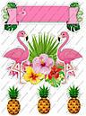 Розовый фламенго