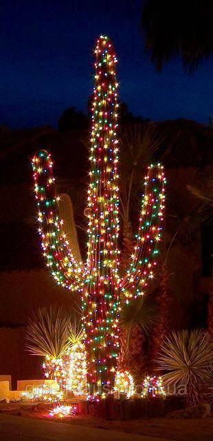 Необічное новогоднее дерево в Аризоне - Кактус