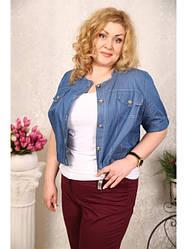 Женские жакеты, пиджаки, кардиганы больших размеров