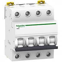 Автоматический выключатель iK60 4P 50A B Schneider Electric (A9K23450), фото 1