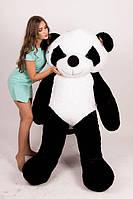 Плюшевая Панда 2 метра  TeddyBoom