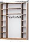 Шафа-купе з художнім матуванням на бронзових дзеркалах, фото 3