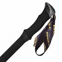 Треккинговые палки Vipole Climber AS QL EVA RH Long Silent S1922, фото 2