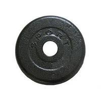 Диск стальной Newt Home 1 кг (TI-0011)