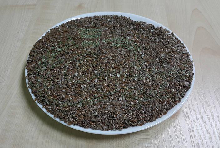 Лён семена 1кг, фото 2