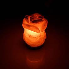 Соляная лампа SALTKEY ROSE Red