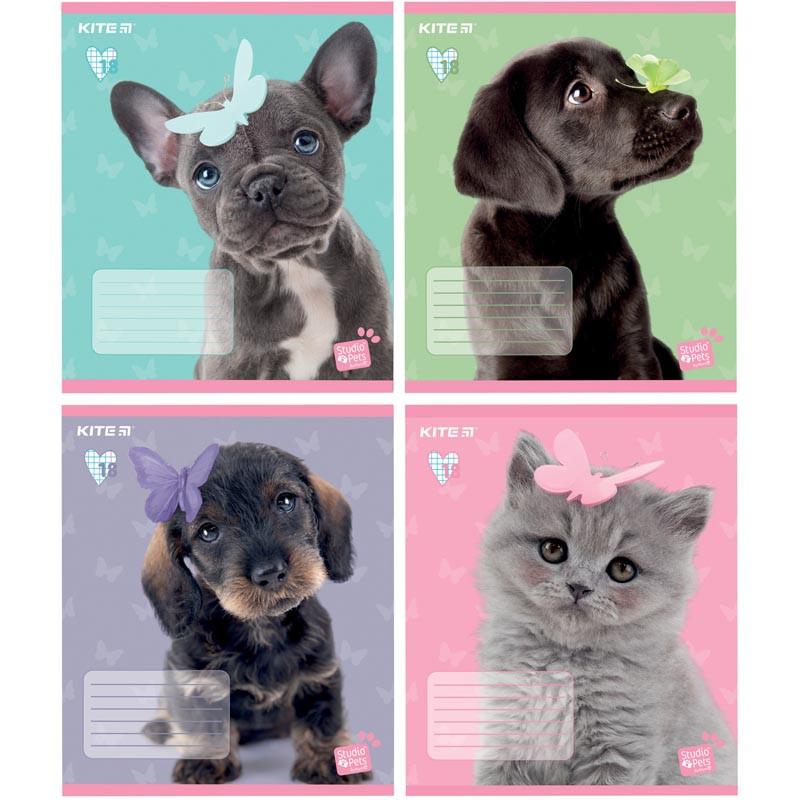Зошит шкільний Kite Studio Pets, 18 аркушів, клітинка SP19-236