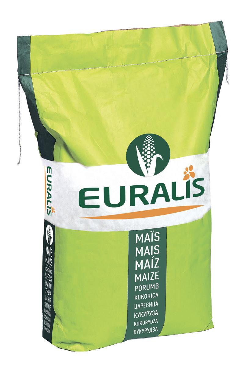 Гибрид кукурузы Euralis Гармониум Пончо ФАО 380