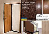 ДВЕРІ ВХІДНІ МЕТАЛ+КОВКА БЕЗКОШТОВНА ДОСТАВКА, фото 10