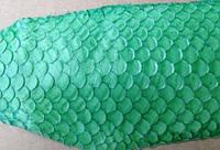 Кожа рыбы натуральная Чешуя круп разноцвет