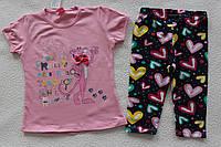 Детская одежда оптом Турция.Туника+бриджи 5,6,7 лет
