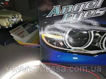 Ангельские глаза Cotton LED BMW E39  Angel Eyes BMW E39, фото 3