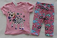 Детская одежда оптом Турция.Туника+бриджи 5 лет