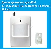 Датчик движения для GSM сигнализации (не реагирует на собак) 433 Hz!Акция