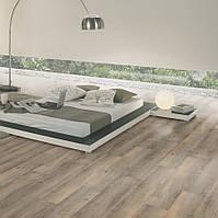 Wineo 600 DB00008 Toscany Pine Grey виниловая плитка DB Wood