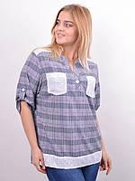 78f842049ae8787 Женские Рубашки в Клетку Большие Размеры — Купить Недорого у ...