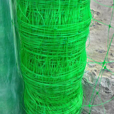 Венгерська сітка шпалерна, для вирощування огірків, рослин, квітів  1,7м 100 м комірка 15х17, фото 2