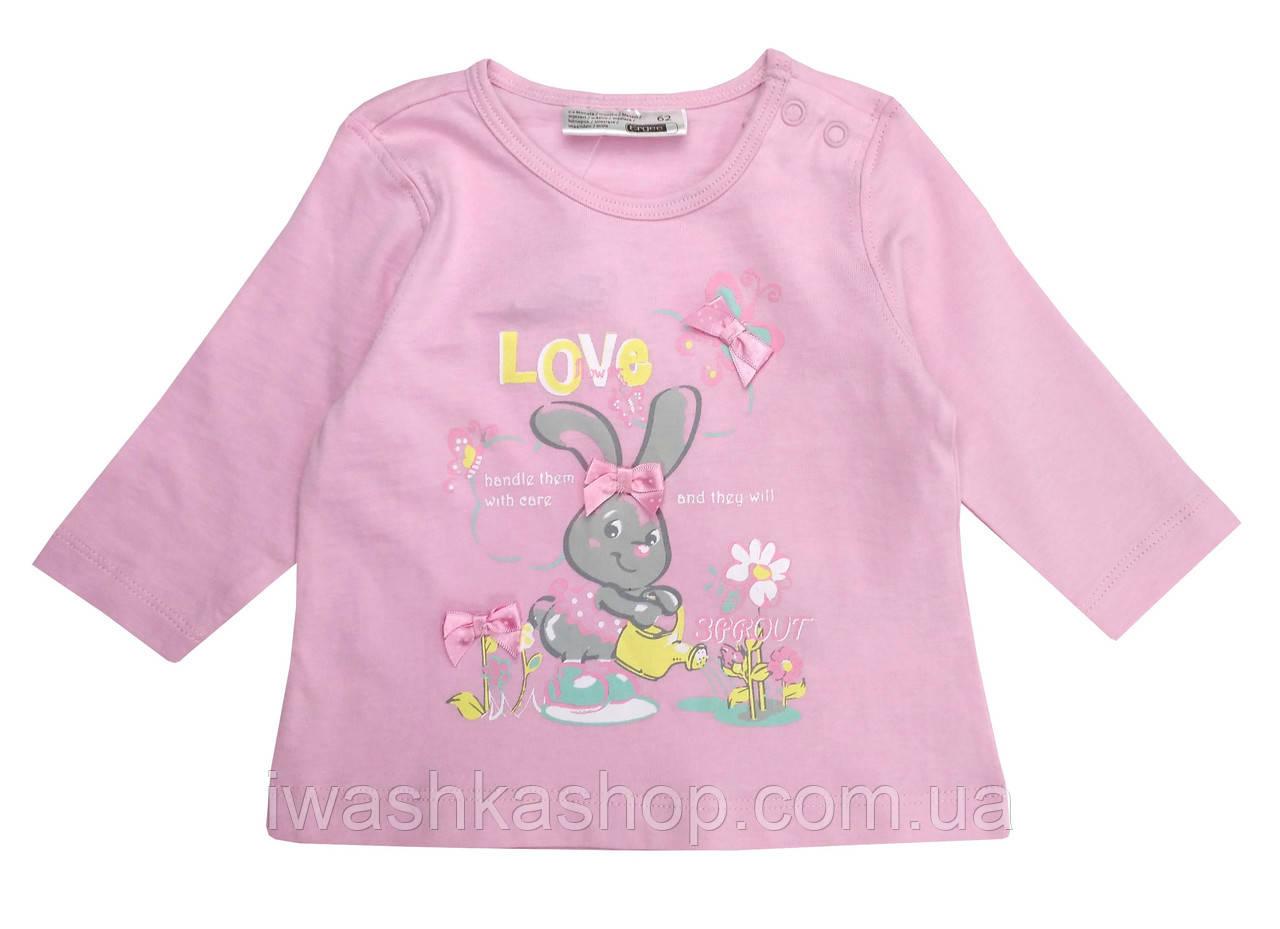 Розовый лонгслив с зайчиком для девочки 2 - 4 месяцев, р. 62, Ergee / KIK