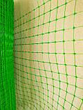 "Сетка ""Птичка"" 2х100м для защиты от птиц, рулон, ячейка 12х14 мм. (зеленая, черная) Клевер, фото 2"