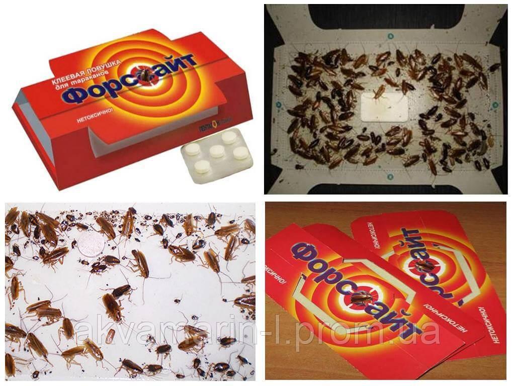 Клеевая ловушка Форсайт с приманкой от тараканов и муравьёв 5шт.
