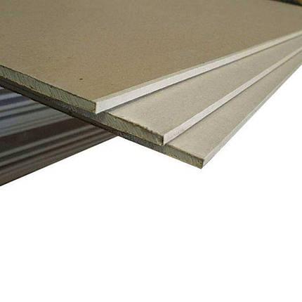 Гипсокартон KNAUF 1,2х2,5 (12,5 мм), фото 2