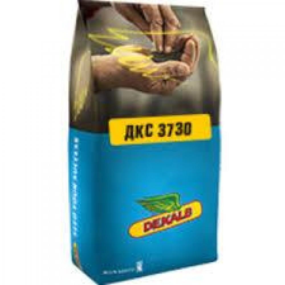 Гибрид кукурузы Monsanto ДКС 3730 Акселерон Элит / ДКС 3730 Пончо ФАО 280