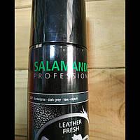 Спрей-краска Salamander Professional 027 (темно-серый) для гладкой кожи 250 мл