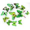 4D бабочки для декора с магнитом и двусторонним скотчем Зеленые